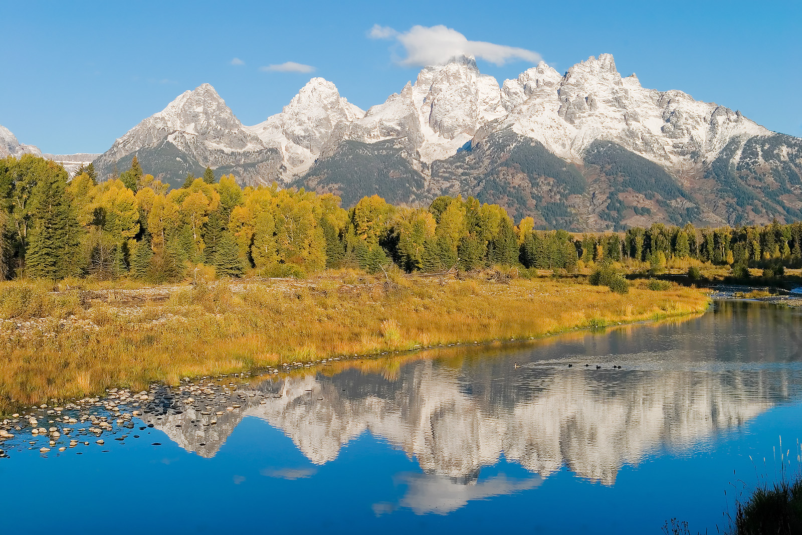 Reflected Tetons