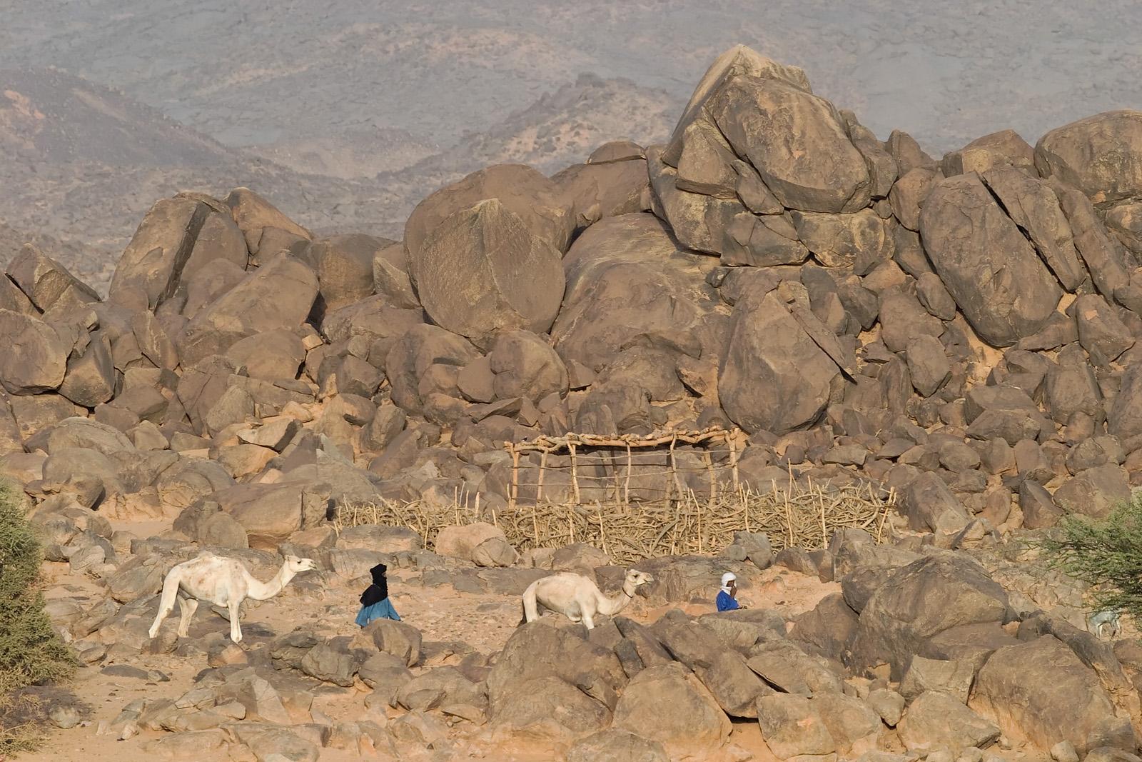Taureg Nomads