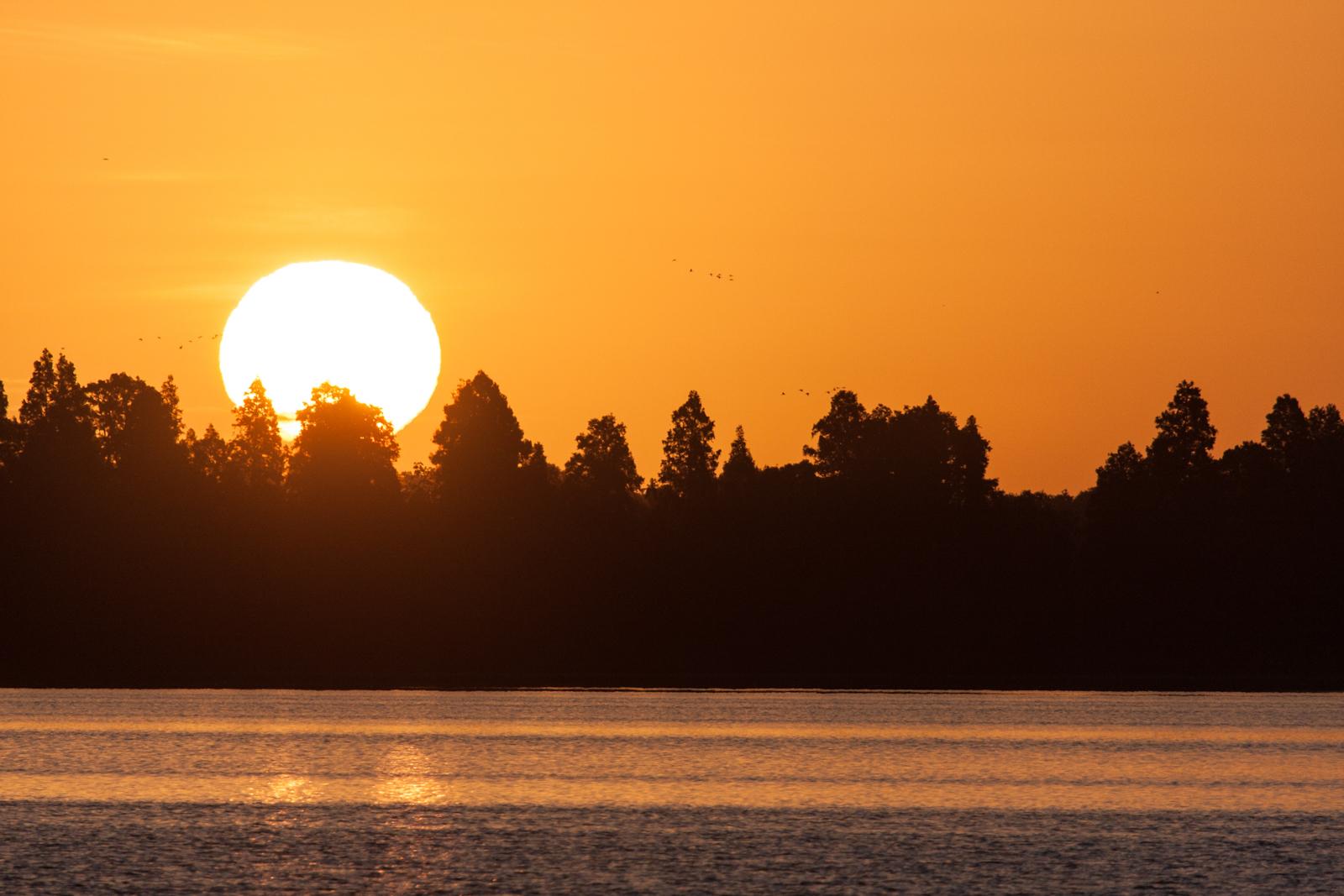 Florida Sunrises