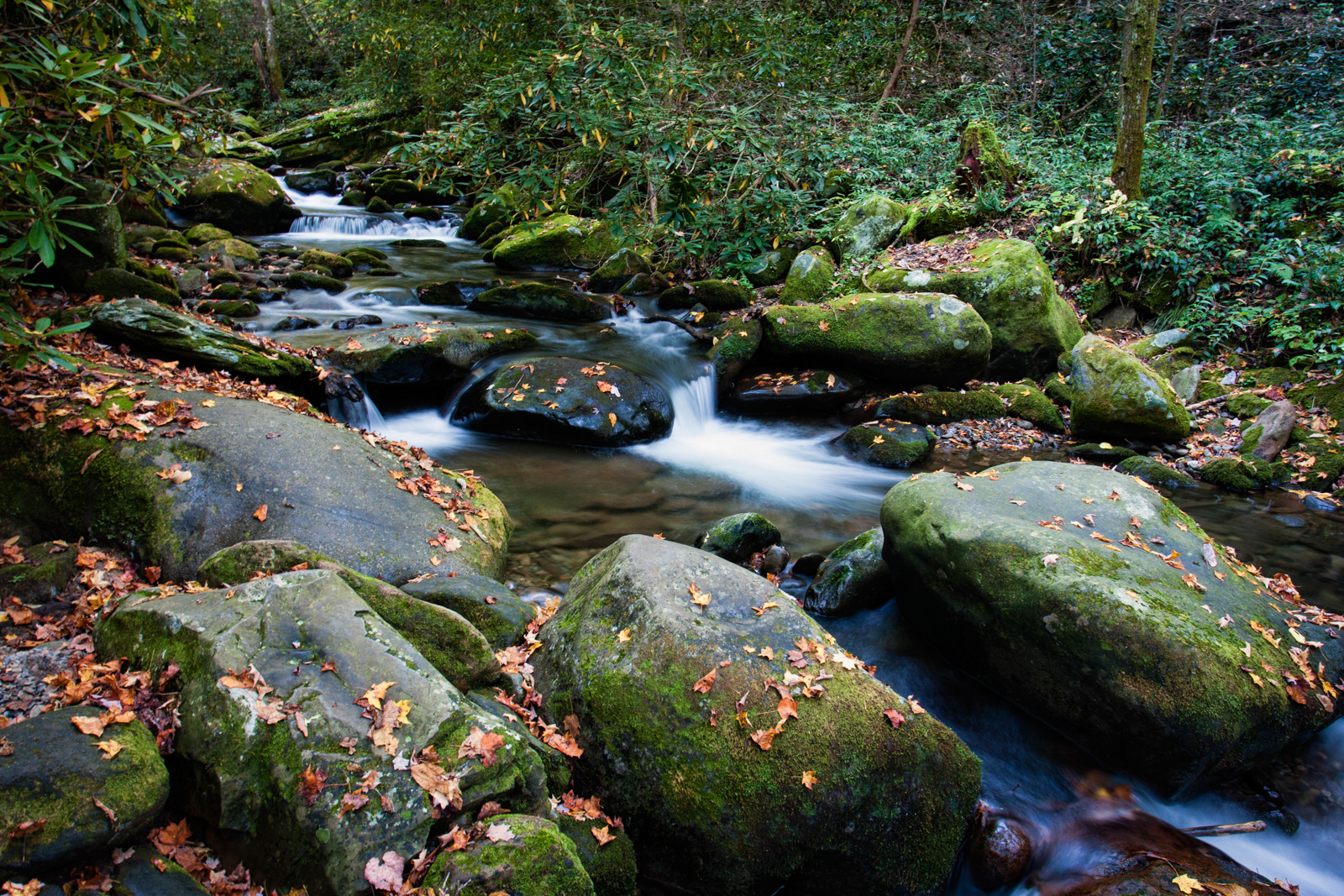 Great Smoky Mountains National Park – Stream and Missionary Baptist Church