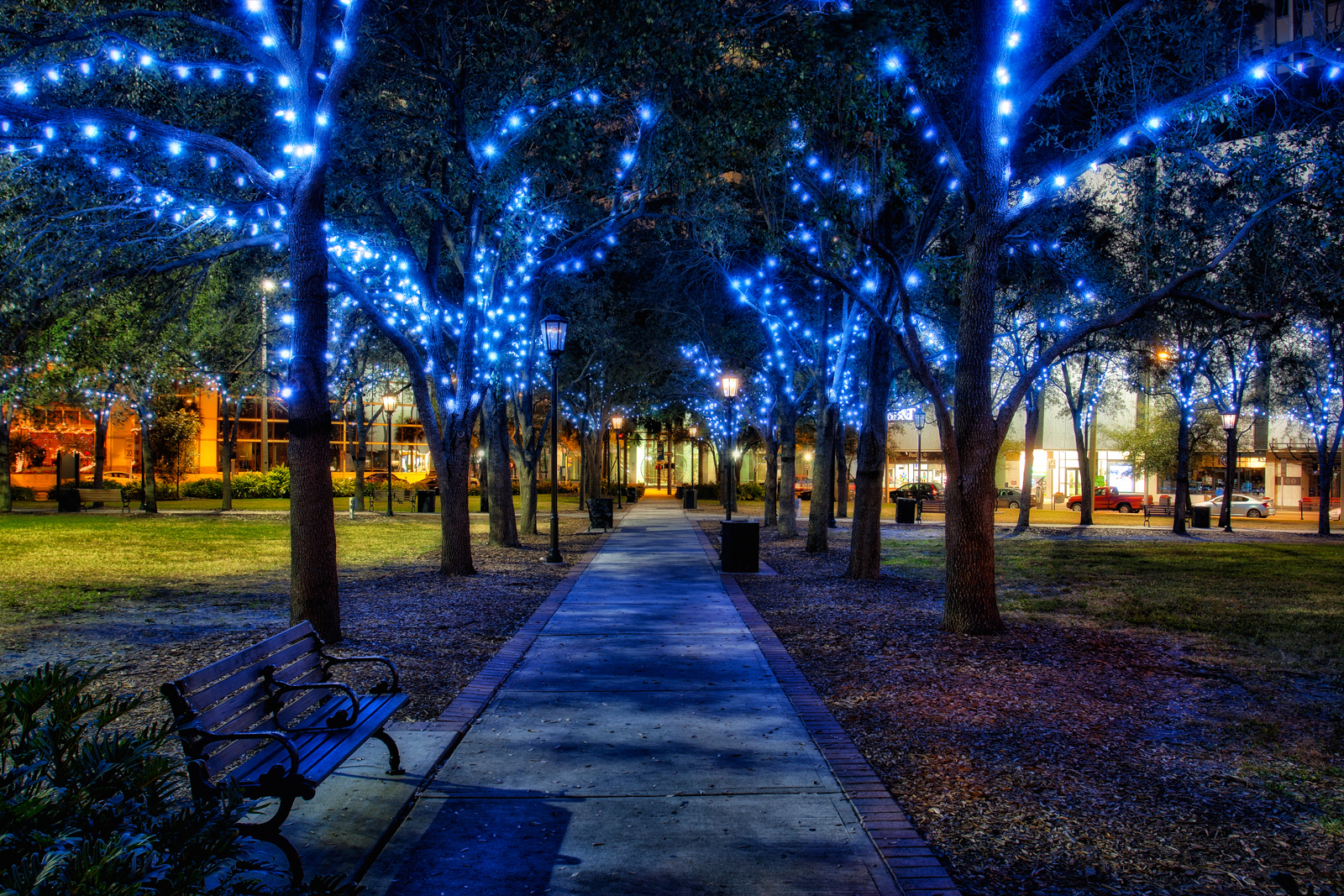Christmas Lights in Lykes Gaslight Park