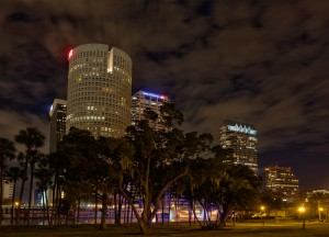 Tampa Through the Trees