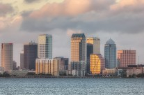 Tampa Skyline from Ballast Point Park