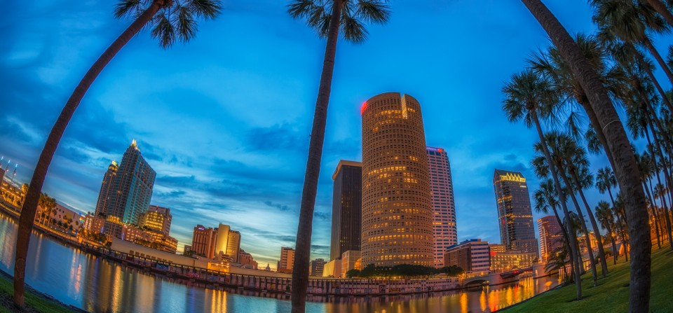 Tampa Warm and Cool Tones