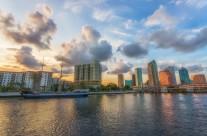 Tampa Sunshine