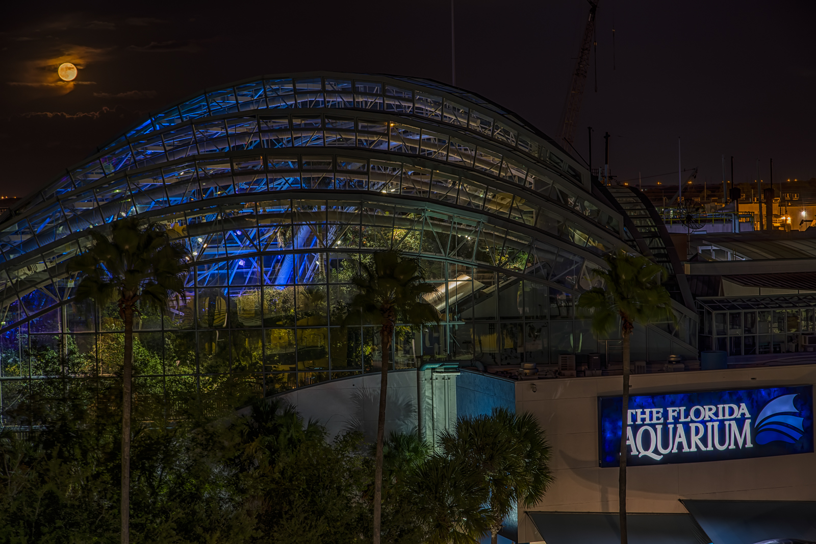 Full Moon Over Florida Aquarium And New View Of Tampa
