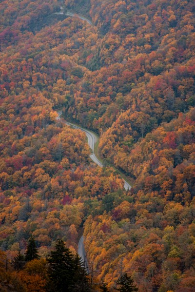 Serpentine Roadway through the Smokies in Fall