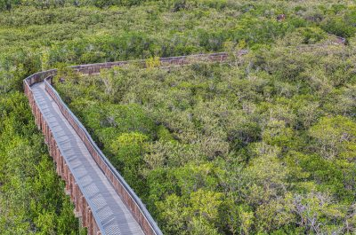 Weedon Island Boardwalk from above