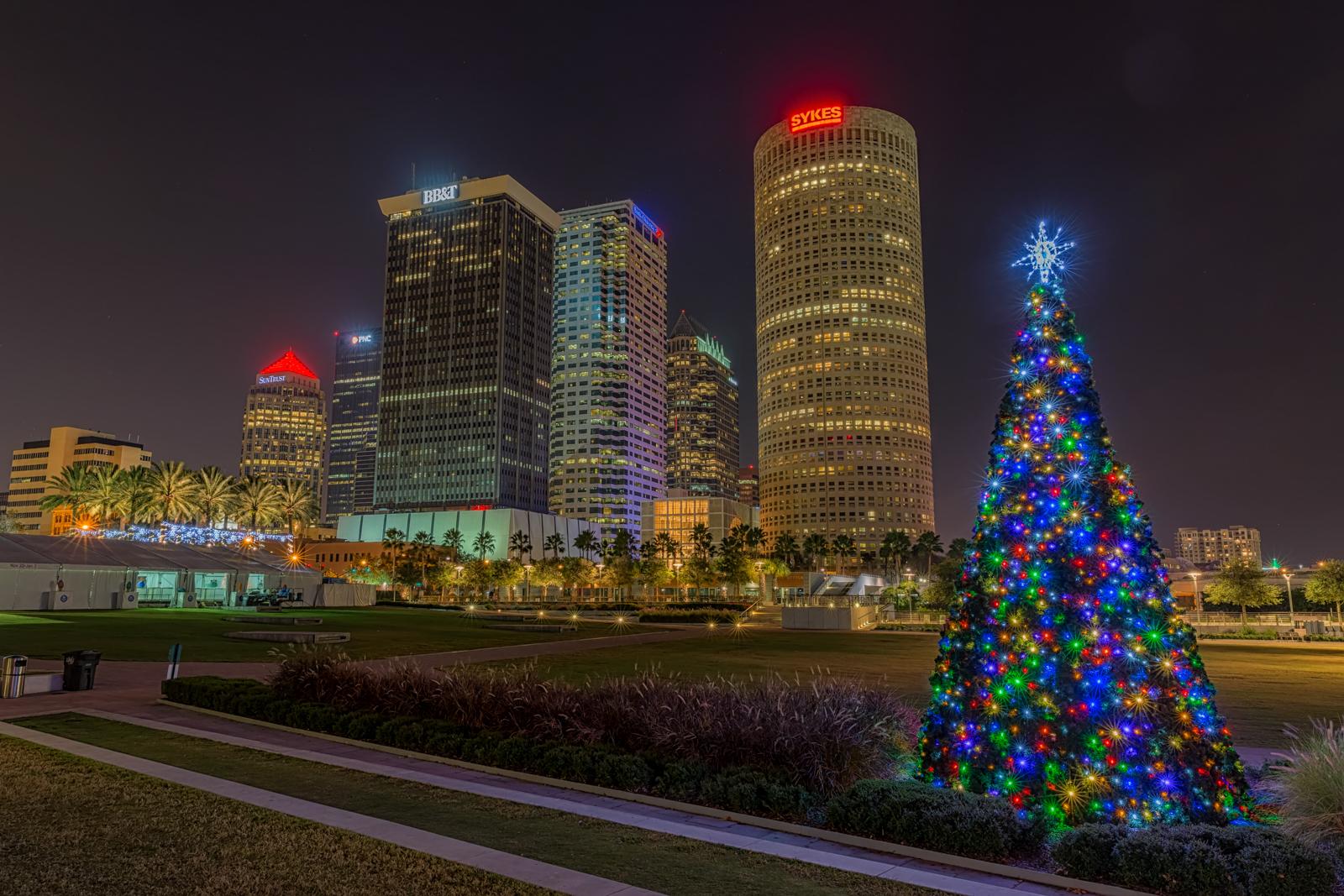 Curtis Hixon Park Christmas Tree | Matthew Paulson Photography