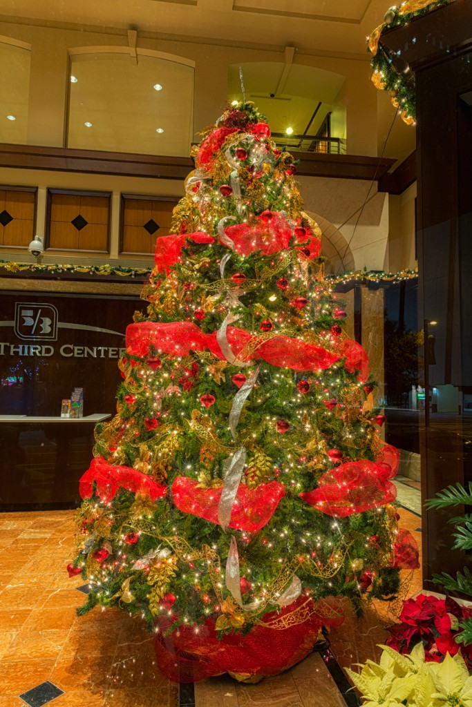 Fifth Third Center Christmas Tree, Tampa, Florida