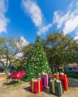 Hyde Park Village Christmas Tree