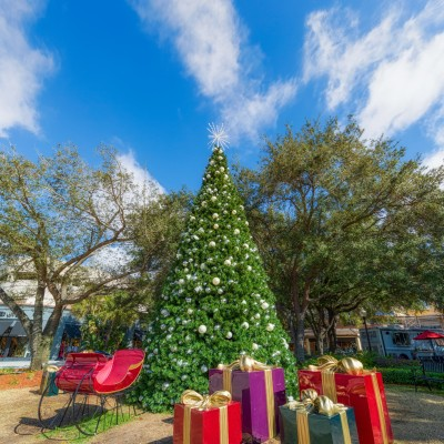 Hyde Park Village Christmas Tree Vertical 2, Tampa, Florida