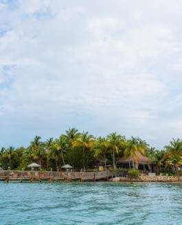 Rest and Relaxation at Little Palm Island