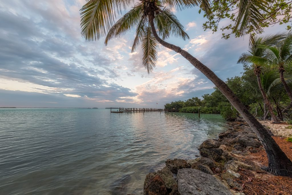 Little Palm Island Leaning Palm, Florida Keys