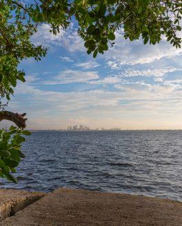 Ballast Point Park View
