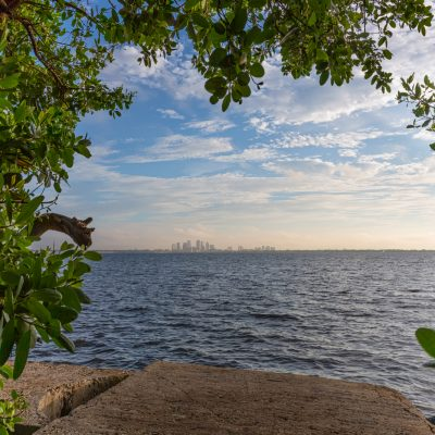Tampa Framed from Ballast Point Park, Tampa, Florida