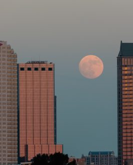 Supermoon over Tampa