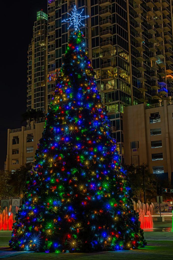 Curtis Hixon Christmas Tree Closeup, Tampa, Florida