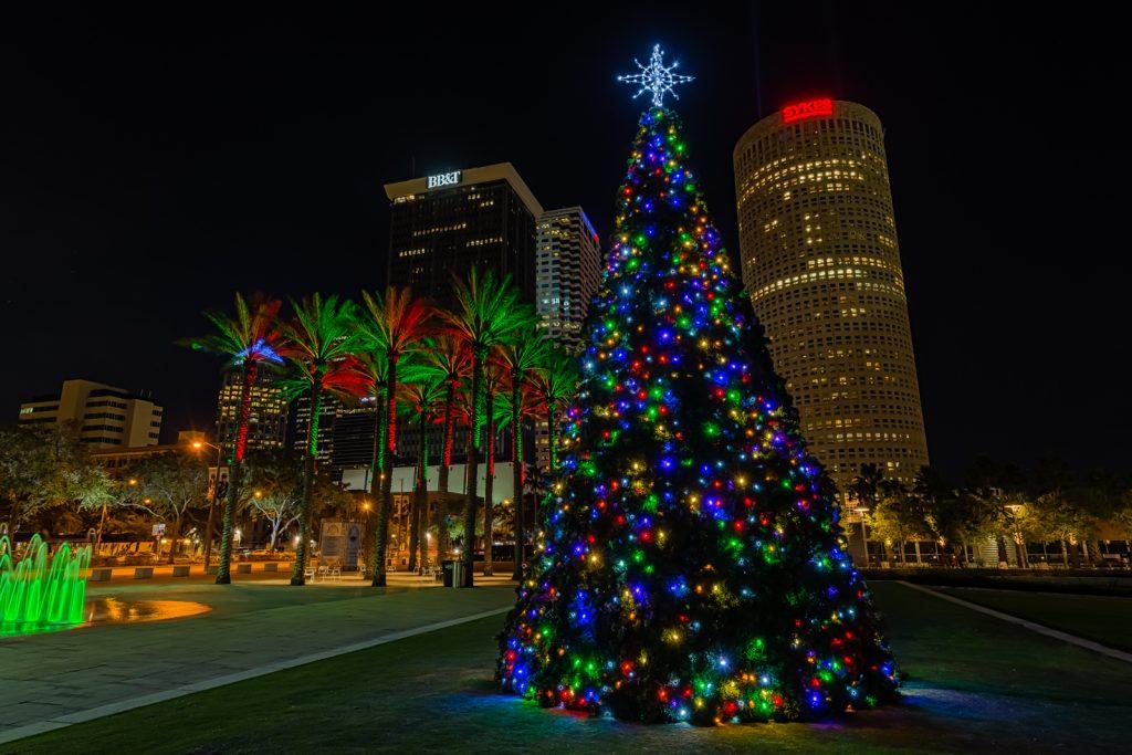 Curtis Hixon Christmas Tree Medium, Tampa, Florida