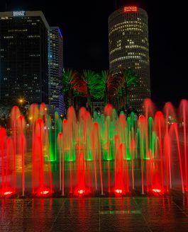 Red and Green Tampa