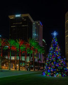 Merry Christmas Tampa