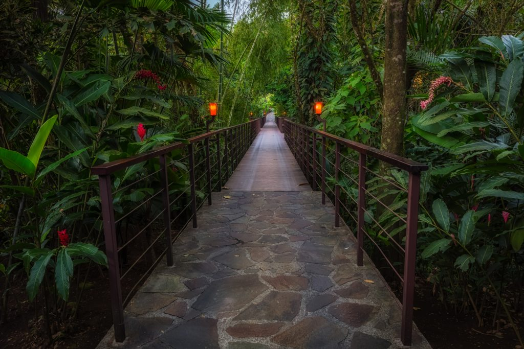 Early morning path, Nayara Hotel, La Fortuna, Costa Rica