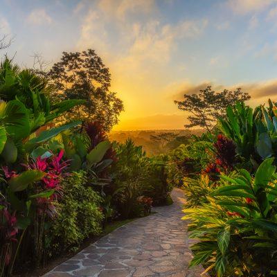 Sunrise at Nayara Hotel, Nayara Hotel, La Fortuna, Costa Rica