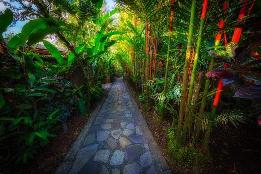 The path, Nayara Hotel, La Fortuna, Costa Rica