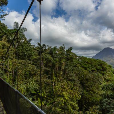 My wife on hanging bridge near Arenal Volcano, Mistico Arenal Hanging Bridges Park, La Fortuna, Costa Rica