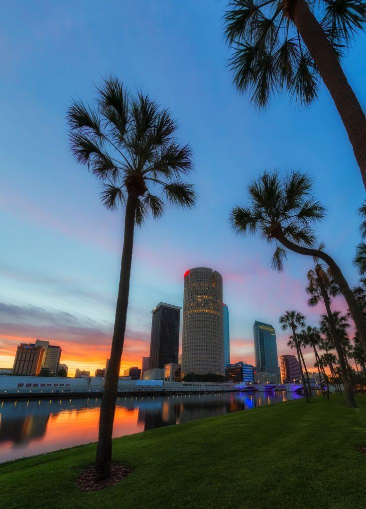 Tampa Palm Sunrise Vertical, Tampa, Florida