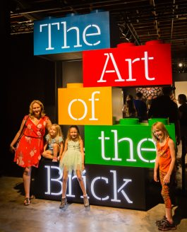 Art of the Brick Tampa