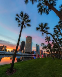 Unusual angles of Tampa