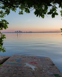 Views from Ballast Point Park