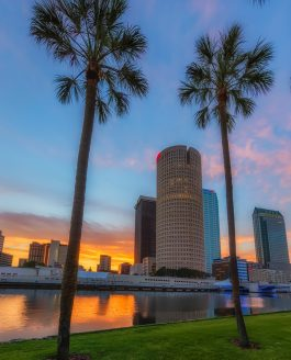 Tampa Pano and more