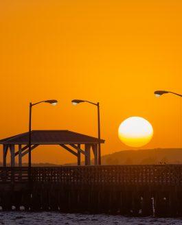 Tampa Sunrise and Skyline View