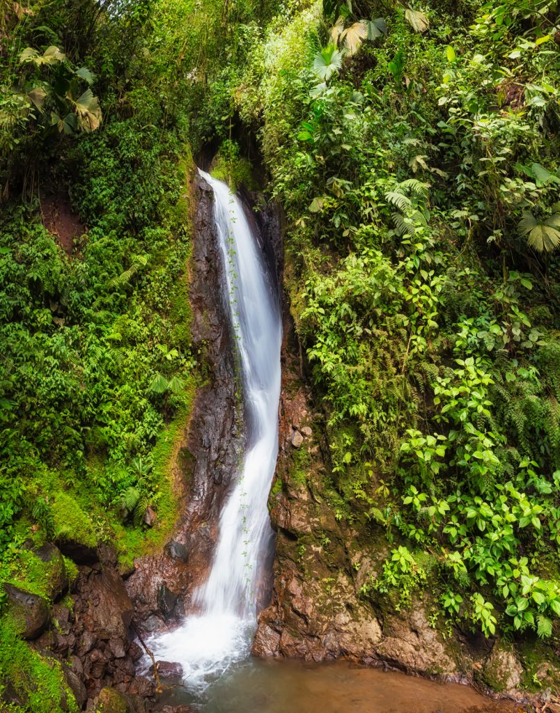 Costa Rica Waterfall, Mistico Arenal Hanging Bridges Park, La Fortuna, Costa Rica