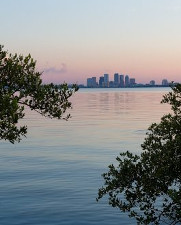 Tampa Bay Sunrise/Sunset