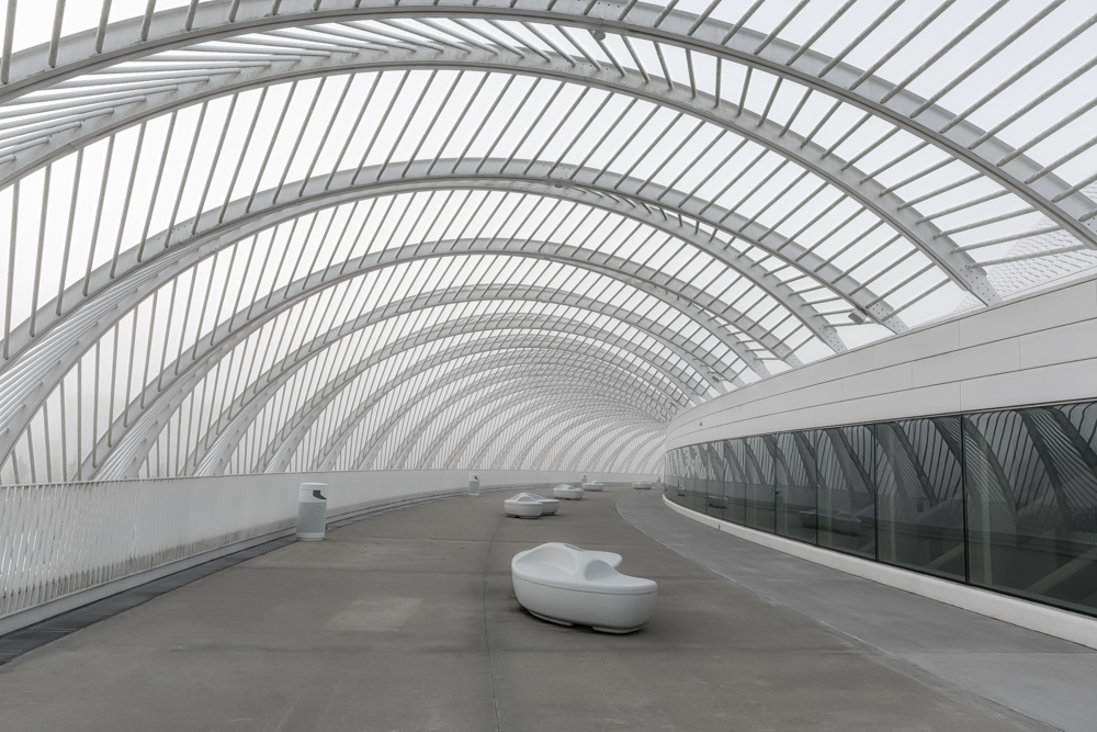 Florida Polytechnic Institute Curves BW