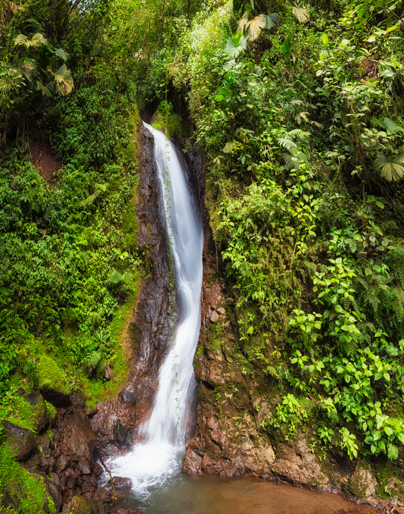 Waterfall - Mystico Arenal Hanging Bridges Park